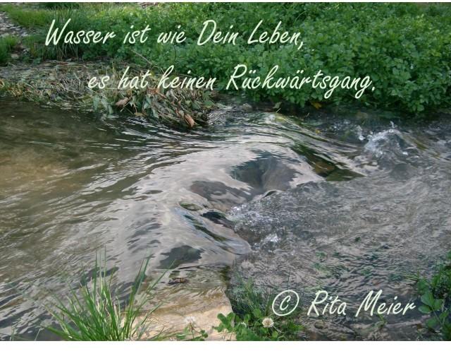 Wasser Rückwärtsgang